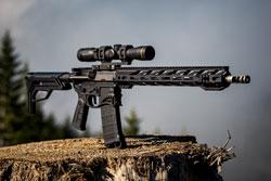 BB rifle on brown grass field