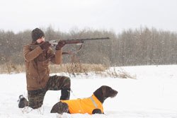 The hunter aims at the bird, and the dog waits for the shot.