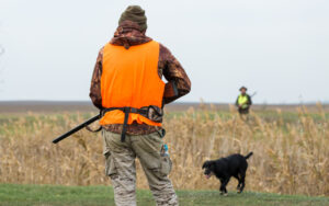 A man with a gun in his hands and an orange vest on a pheasant hunt in a wooded area in cloudy weather