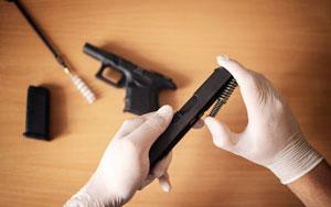 Handgun disassembled into parts and brush